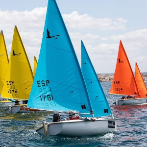 Accessible sailboats on the water