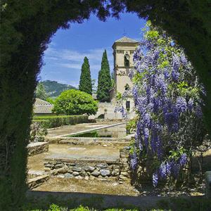 Alhambra Garden View