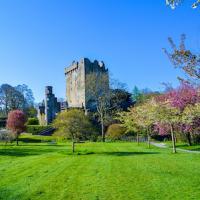 Blarney Castle Cork Ireland Blossom