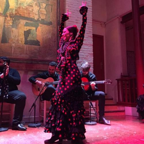 Flamenco show dancer