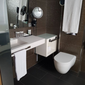 accessible bathroom with toilet