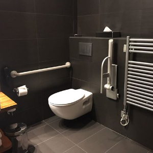 modern accessible toilet