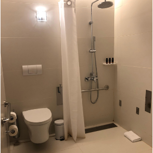accessible toilet and shower with shower curtain