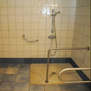 accessible shower with handle bars