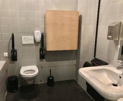 Accessible toilet Canvas
