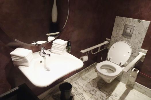 Bridges toilet wheelchair accessible restaurants Amsterdam