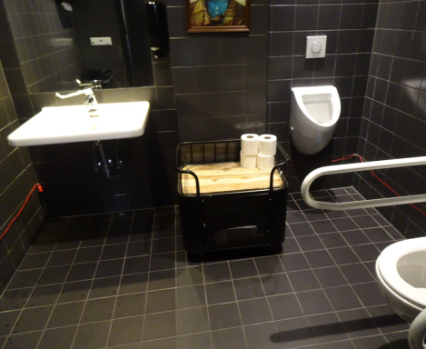 Accessible bathroom Franks