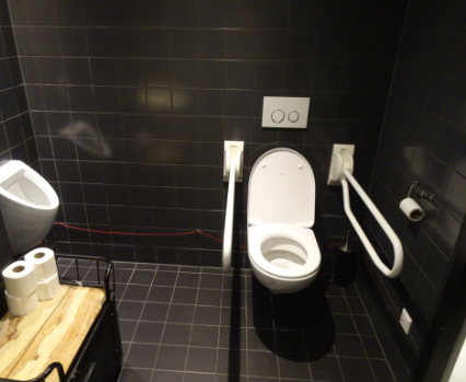 Accessible toilet franks