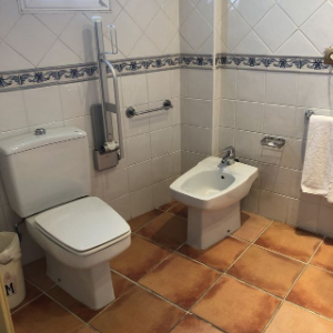 accessible toilet in cadiz