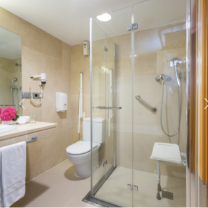 accessible toilet and shower with seat