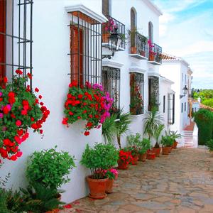 Marbella White Houses Flowers
