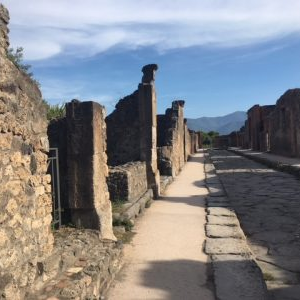 Pompeii Wheelchair Accessible