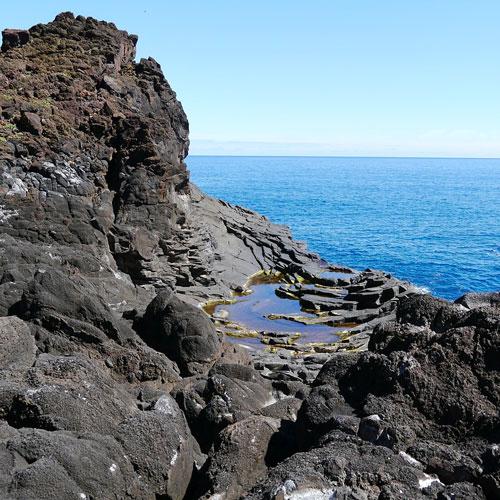 Discover Southern Madeira - Seixal Madeira