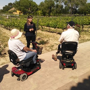 Torres winery accessible tour