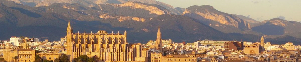 Wheelchair Accessible City of Palma and Bellver Castle Hero