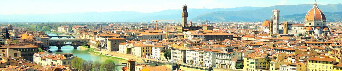 Wheelchair Accessible Pisa and Florence tour