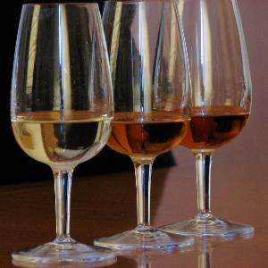 Winetasting spain