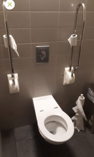 Rijksmuseum Amsterdam Wheelchair Accessible Bathrooms
