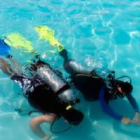 2 scuba divers in water
