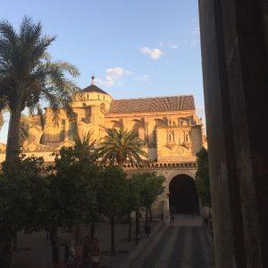 mezquita door of palms