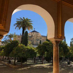 mezquita patio de los naranjos