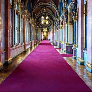 parliament budapest carpet