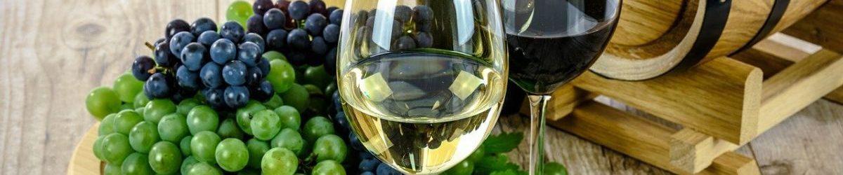 wine tour valencia hero